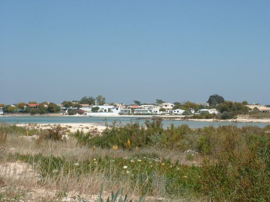 Armona beach houses