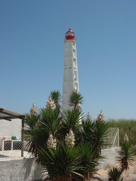 Farol, the iconic lighthouse on Culatra