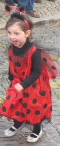 Doesn't this small ladybird wear red beautifully?
