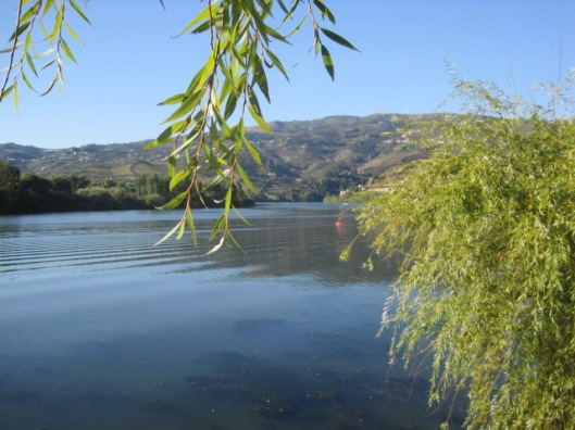 So many shots I have of that Douro