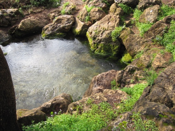 A natural spring- the simplicity of nature