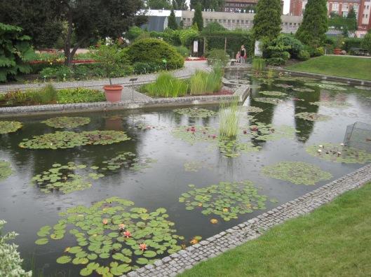 A little warm rain in the botanic gardens