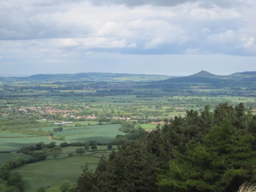 Looking out towards Roseberry Topping