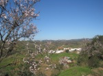 An almond blossom walk through the Algarve countryside