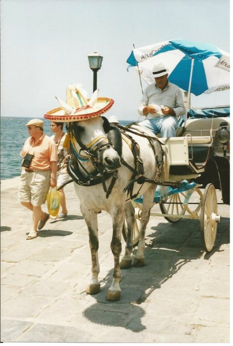 Speaking of elegance, I did love Chania in Crete