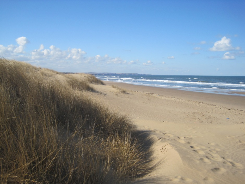 And into the dunes
