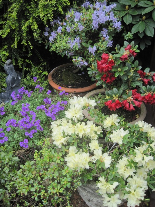 The pots and planters are busy