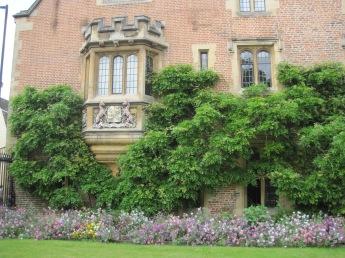 """The beautiful """"Backs"""" in Cambridge"""