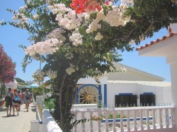My favourite island, Armona, always promises carefree