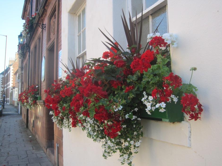Window box outside the Queen Victoria pub in Durham