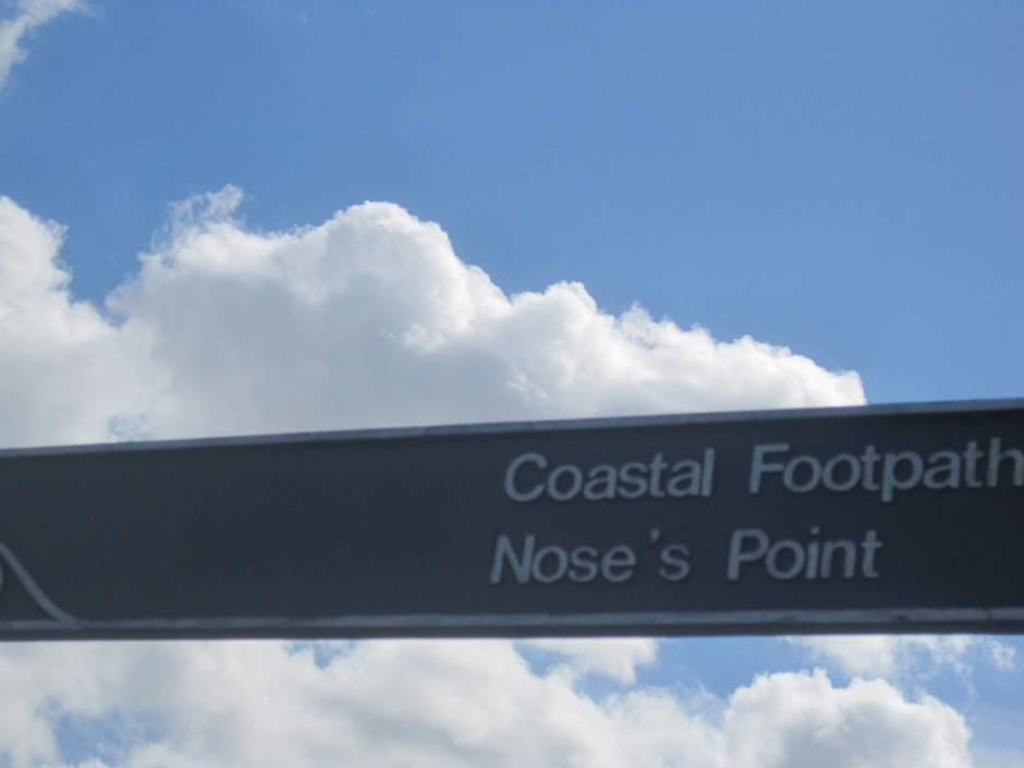 Don't you love a coastal footpath?