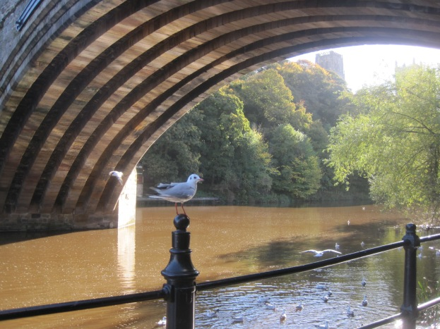 The River Wear was brim full and the reflections sparkled up onto the bridge.