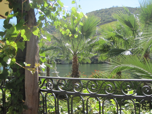 And this view of the Douro might come at more than I can afford.
