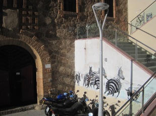 Bikes are very popular transport in the city- not so sure about zebras?