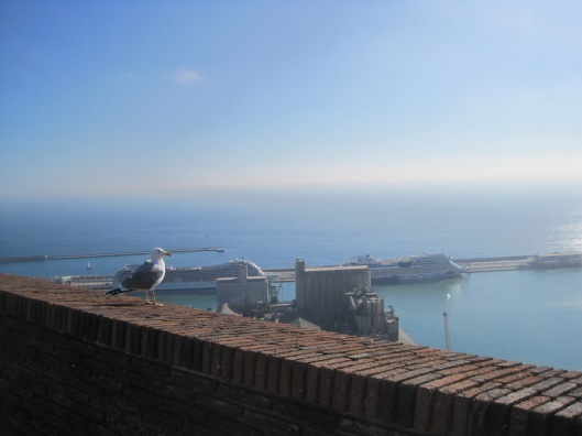 I had to share this view with a seagull.