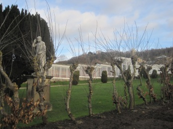 But not this well pruned hedge!