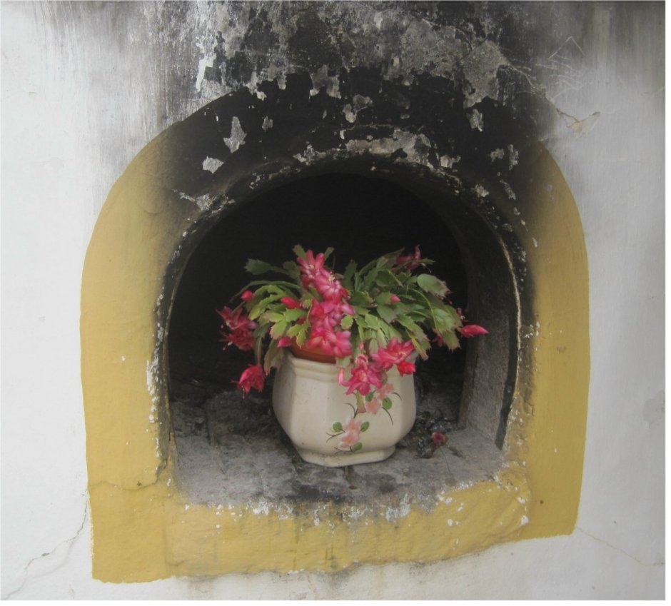 Flowers in bread oven