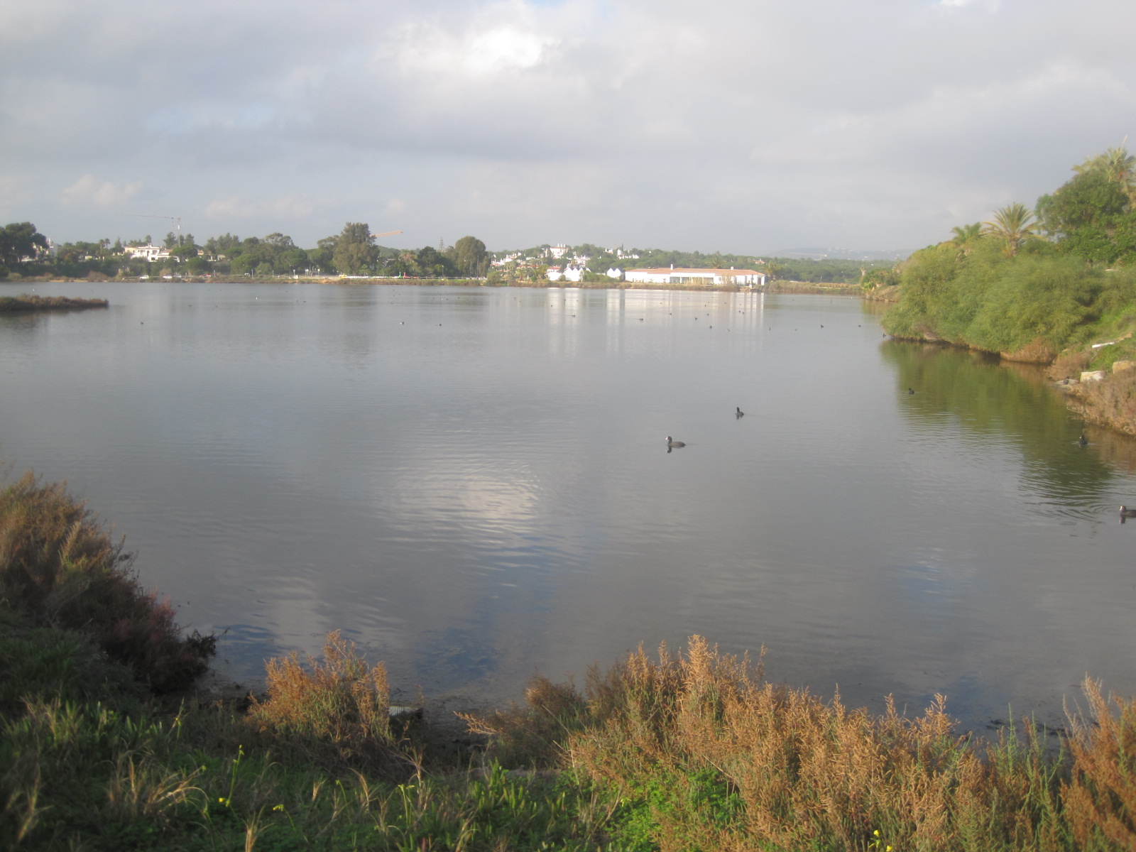 The lake and the country club