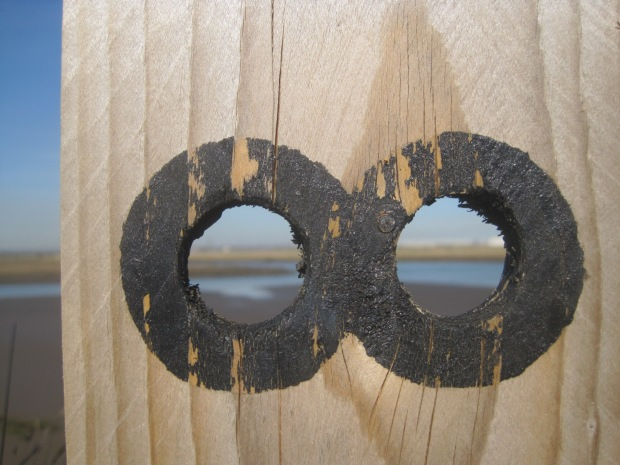 The spy holes in the hide