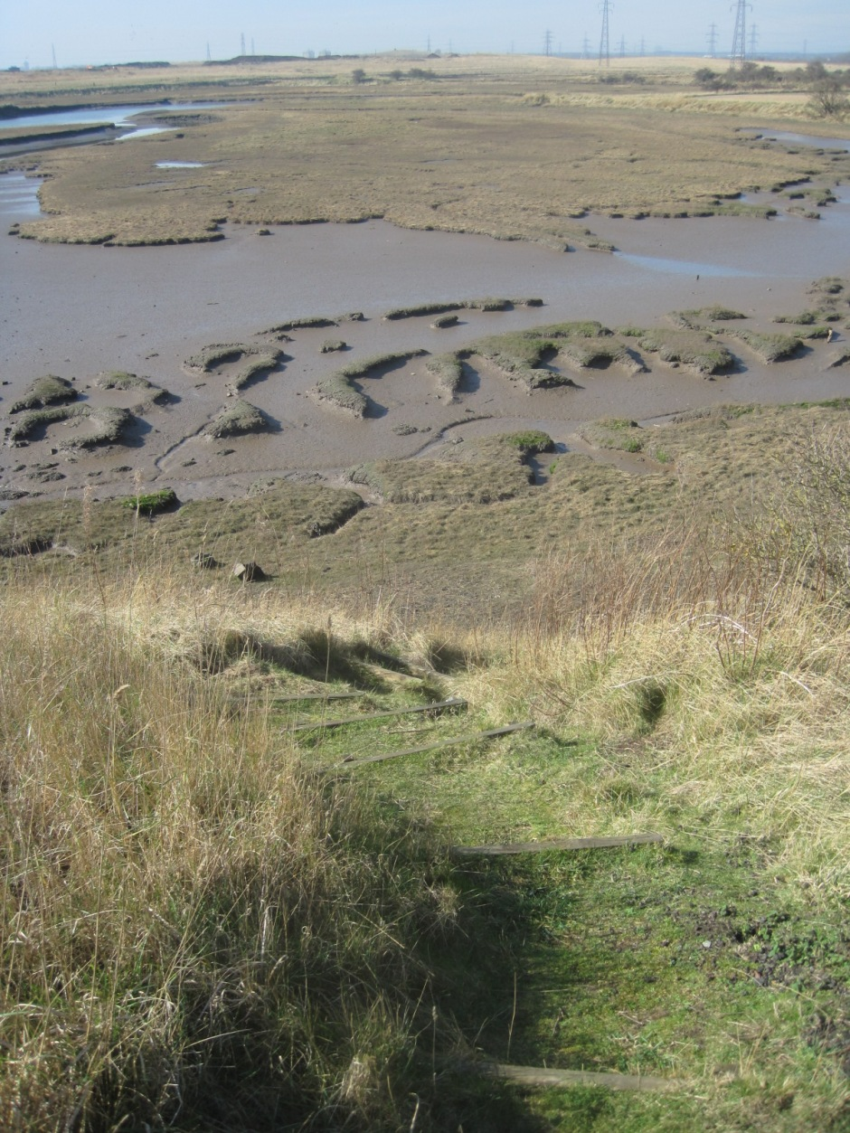 The footpath winds around the creek