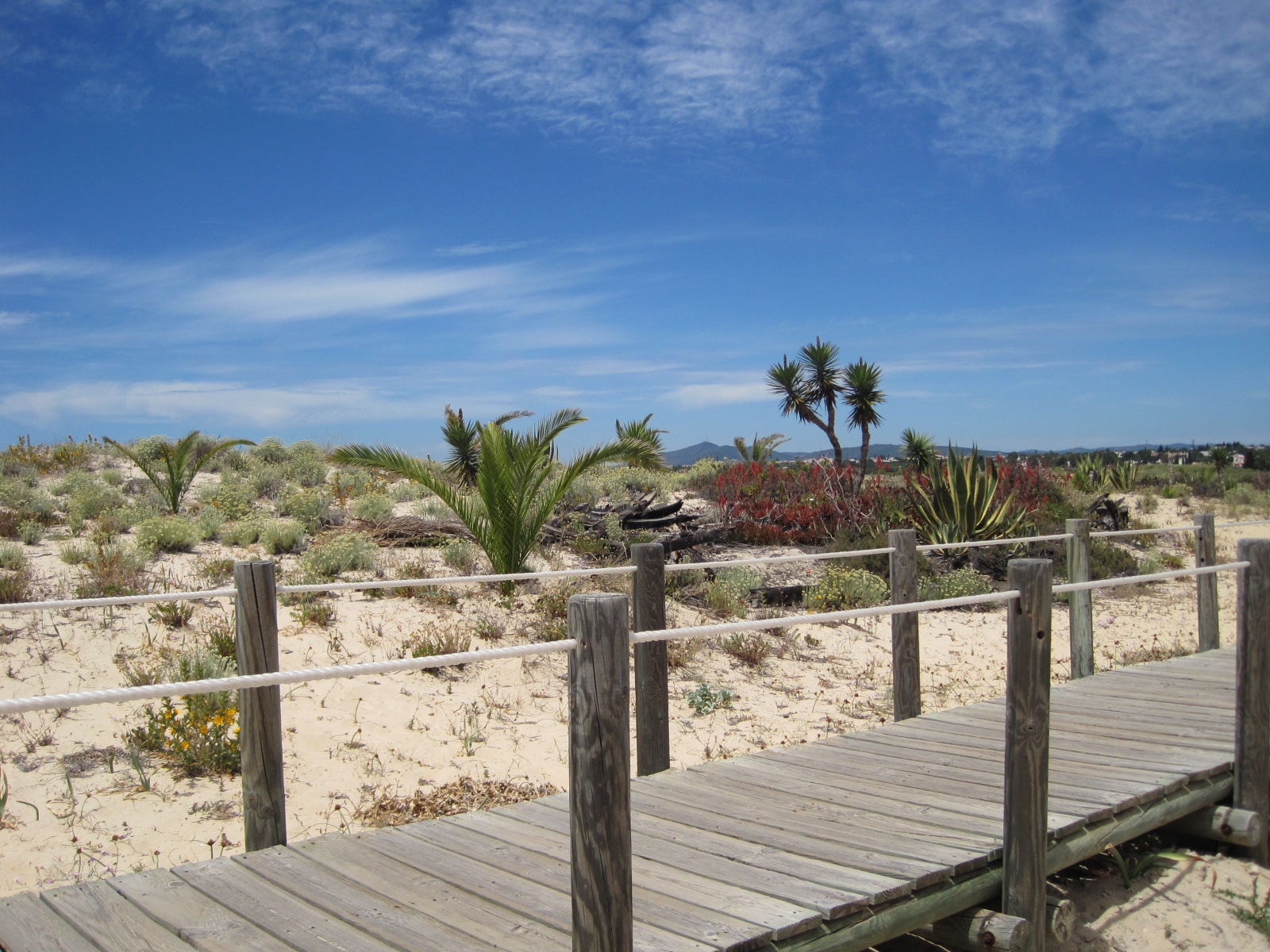 And you're onto the boardwalk at Barril beach