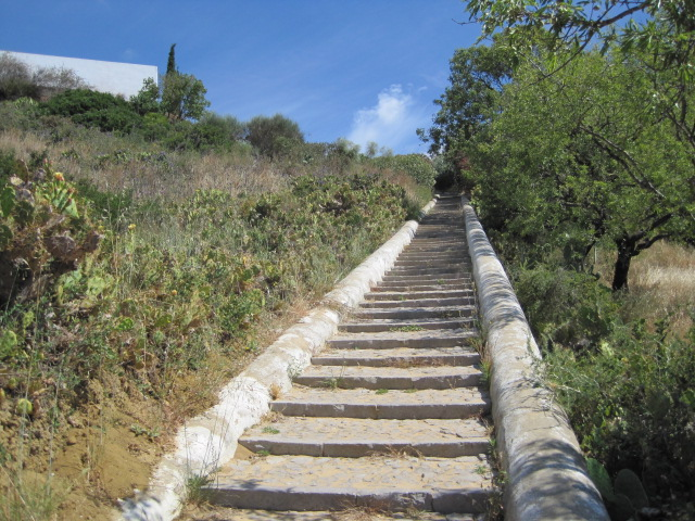 There are a LOT of steps, but down is ok!
