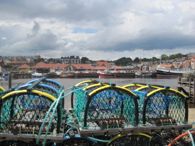 These are the newest lobster pots I ever saw!