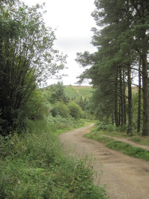 You're following a woodland trail and steadily you will gain height