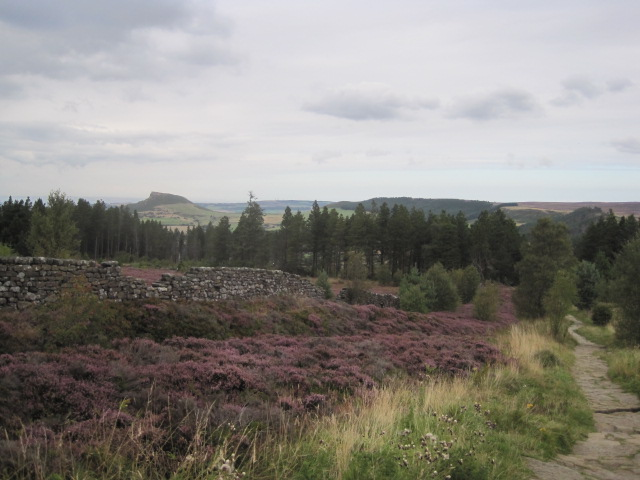 Looking back you can see the moorland trail you have followed
