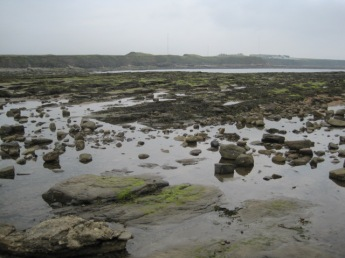 Creating lots of rock pools
