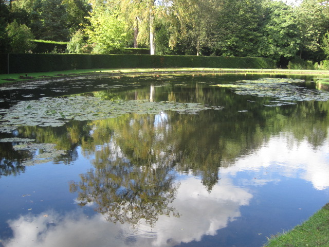 The reflections in the lily pond are lovely