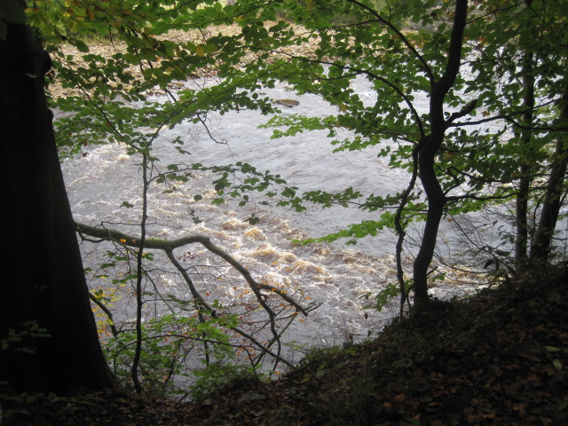 The River Swale chatters along below