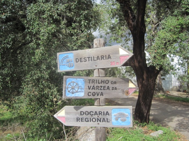 A sign is always useful! 'Docaria' is the cafe.