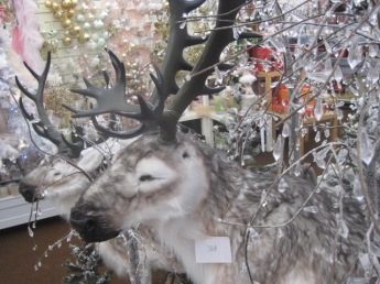 Not real reindeer!