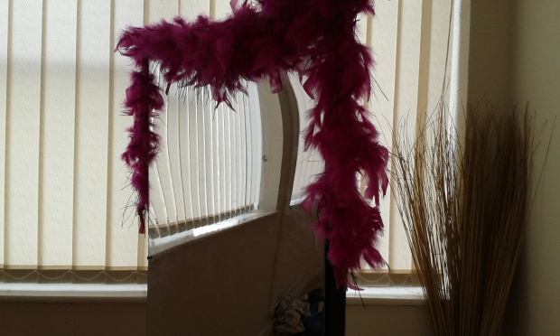 A mirror and a boa, and the reflected blinds