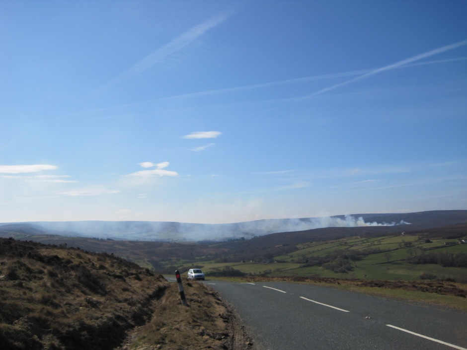 Burning the heather on Farndale