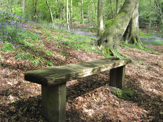 And even a bench for Jude (but not for this month's challenge)