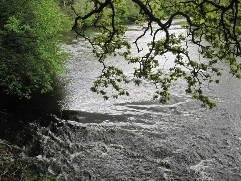 In places the River Wear flows swiftly