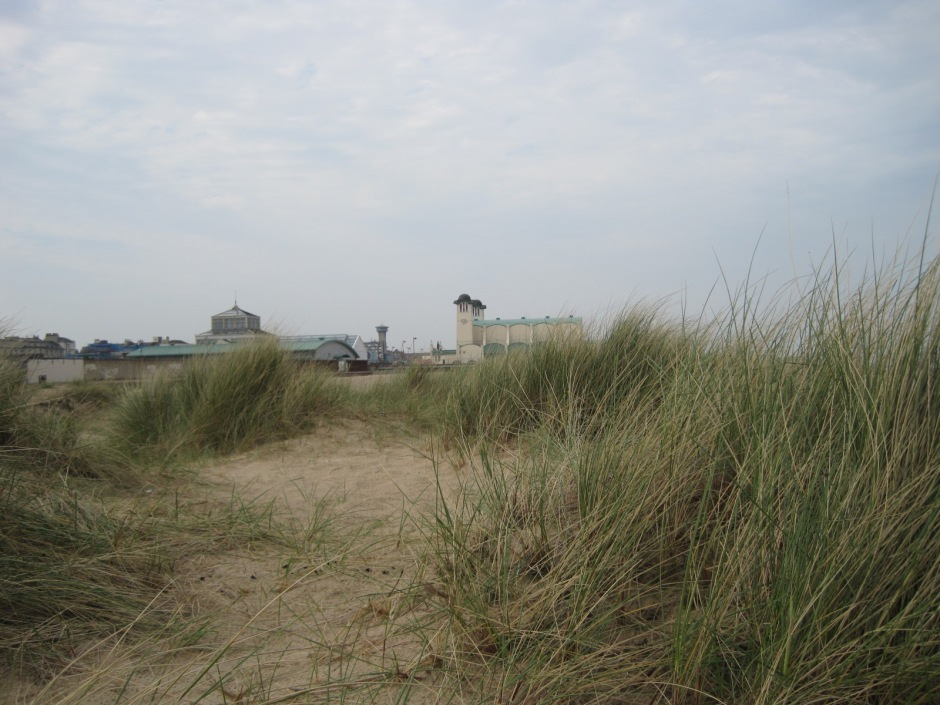 I didn't mind the little bit of dunes