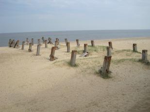 Forlorn pier stumps