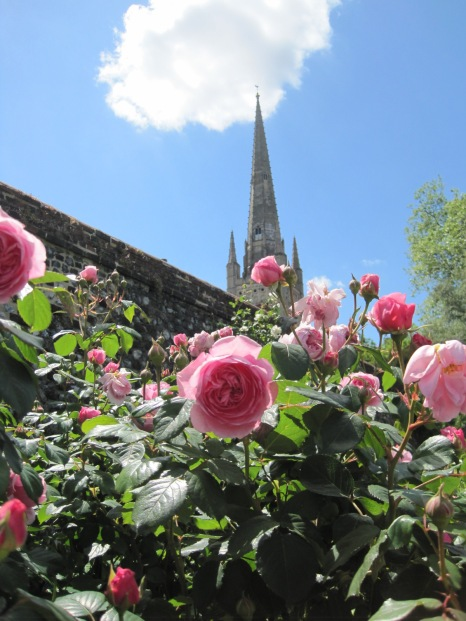 Imagine a garden with the cathedral as backdrop!