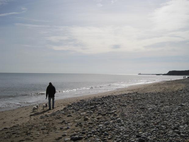 Unconcerned, a man walks his dog