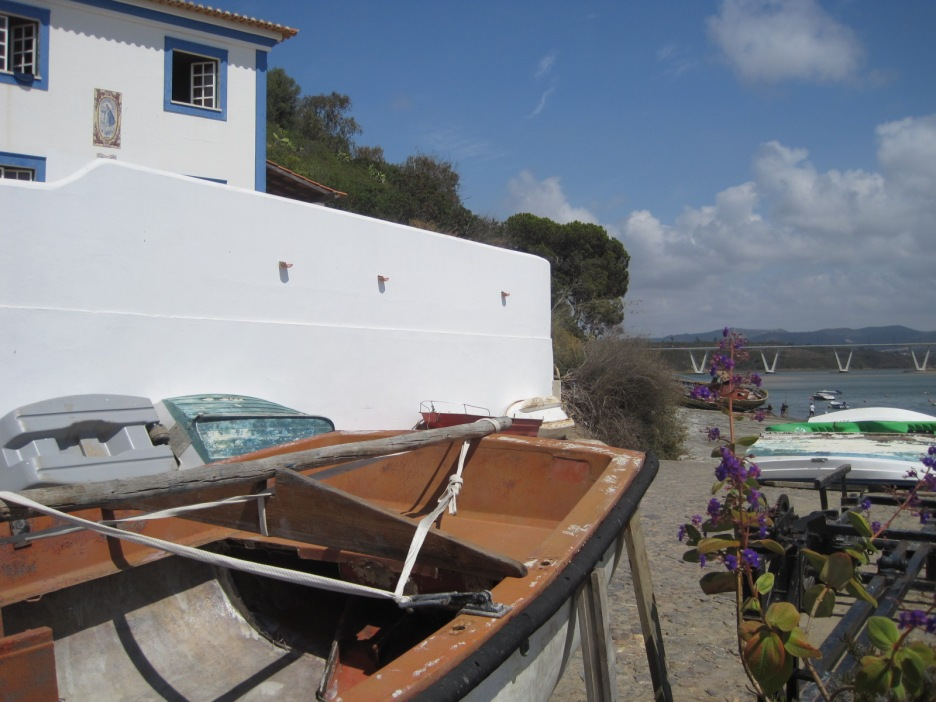 And a litter of boats