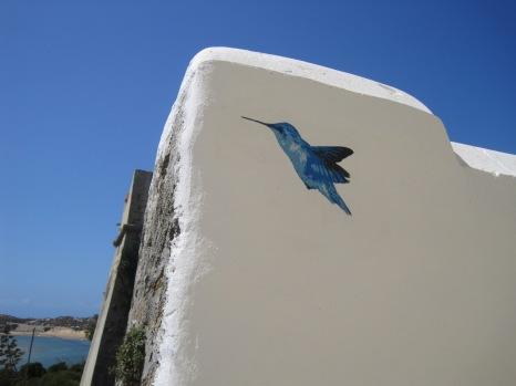 Like this kingfisher