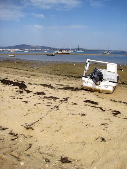Abandoned boats aplenty