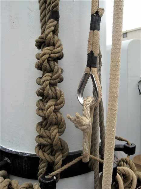 Such a lot of knots!