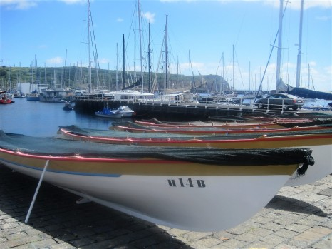 The whaling boats